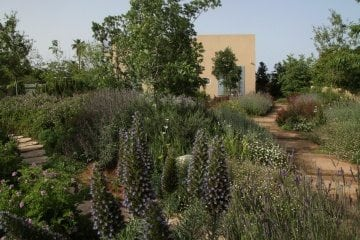 3 טיפים לעיצוב הגינה בדירת גן חדשה בקריות