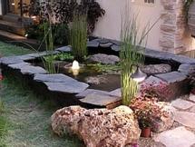5 המוצרים לגינה המומלצים ביותר - להפוך את הגינה שלכם למושלמת